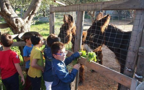 things to do with kids in puglia