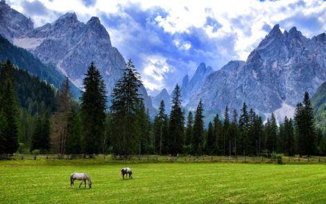 Panorama des Alpes italiennes